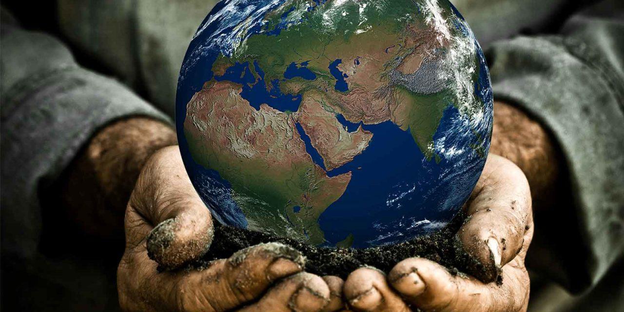 Il Mercato della Terra